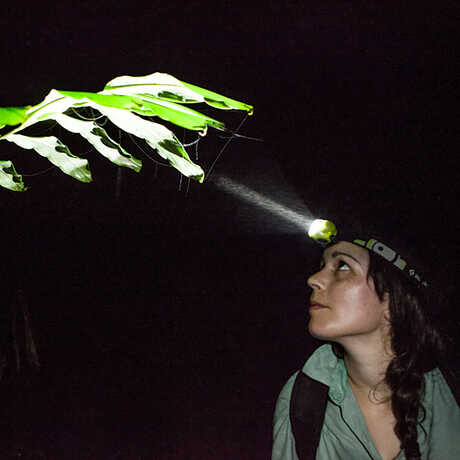 Rayna Bell on a night expedition with headlamp