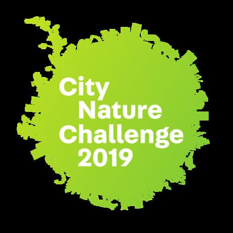 CNC 2019 logo
