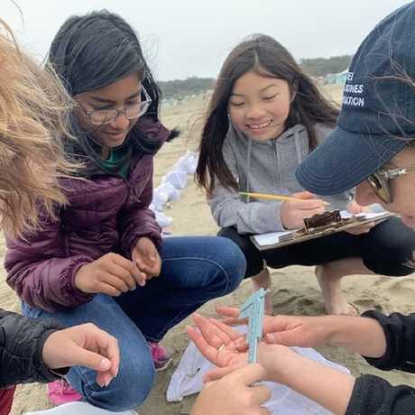 TASC MS youth at Ocean Beach