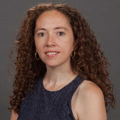 Jackie Faherty's research interests are primarily concerned with the study of brown dwarfs.