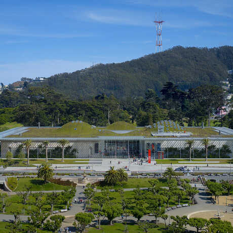 Academy exterior building Golden Gate Park