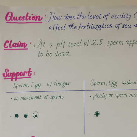 claim, support, question... used in science investigation