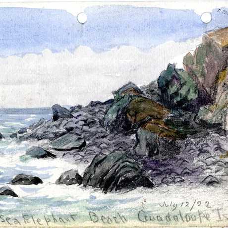 Point at Sea Elephant beach