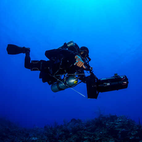 Underwater shot of Academy scientist scuba diving with camera