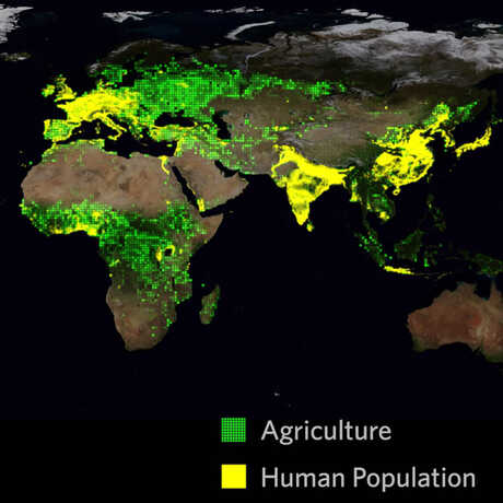 Agriculture and human population