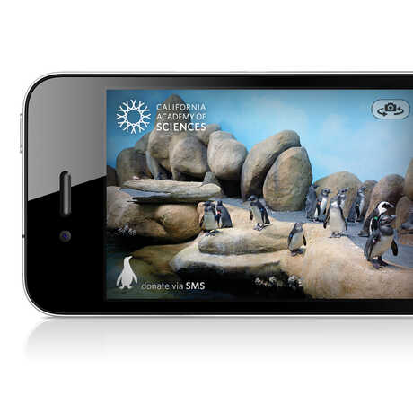 Photo of iPhone with Pocket Penguins app on the screen