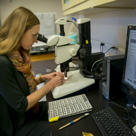Ocean seafloor research