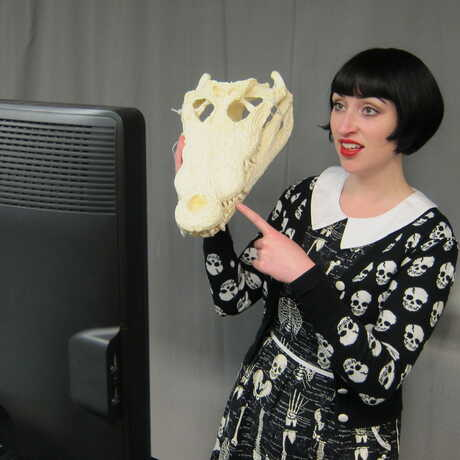 Educator with Crocodile skull