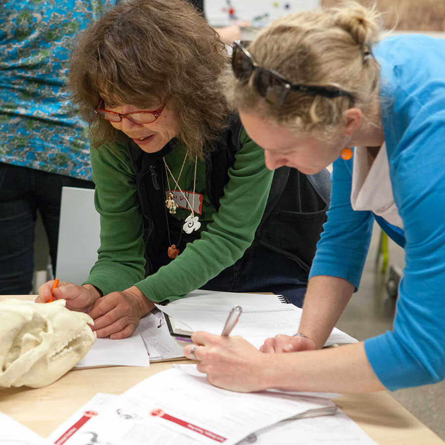 Teachers at the Skulls Classroom Kit Workshop