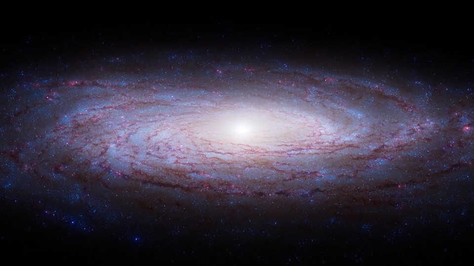 passport to the universe calacademy morrison planetarium