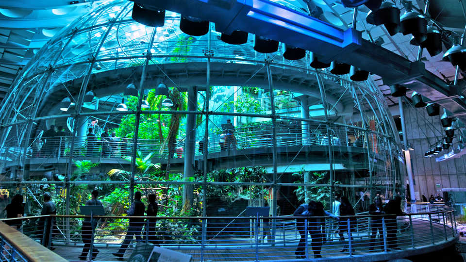 April 2017 Programs And Events At The California Academy