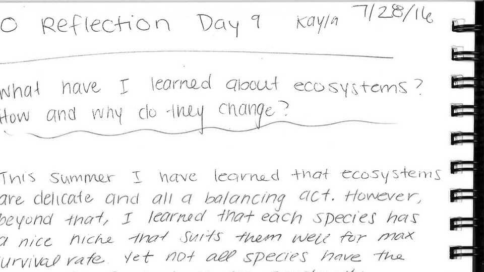 How ecosystems change