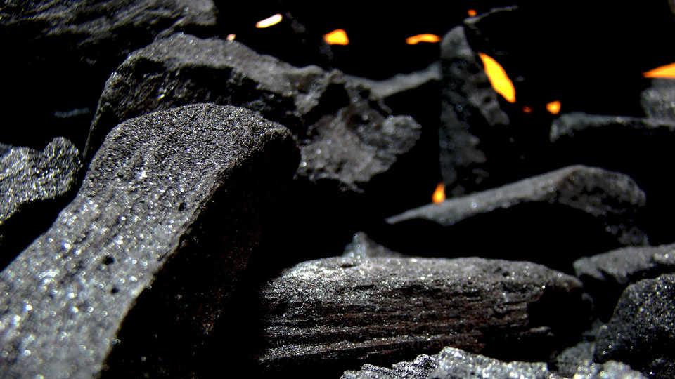 Lesson Plan What Contains Carbon