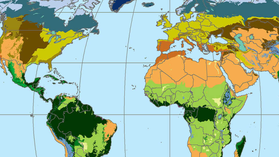 Discovering Rainforest Locations. Map Of World Biomes
