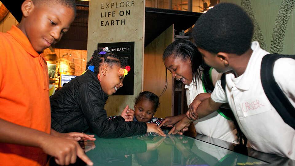 Siblings interact with digital table