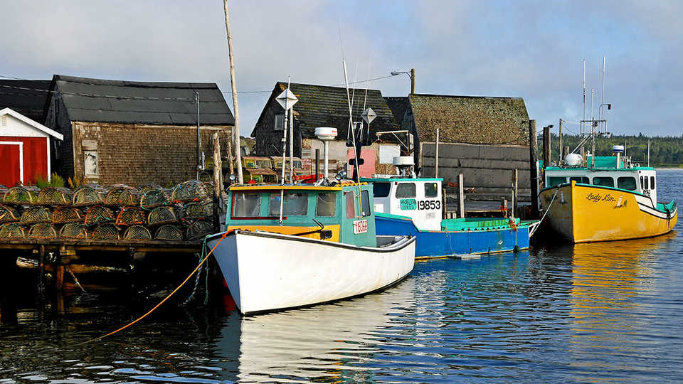 fishing boats with traps