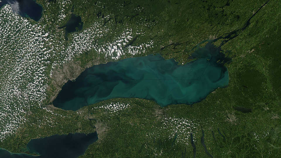 phytoplankton bloom