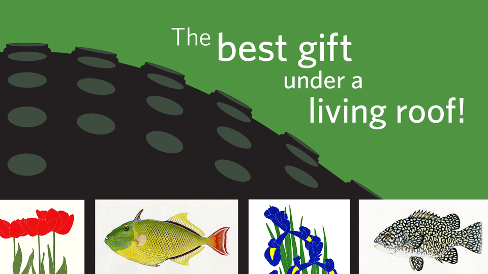 Gift membership image