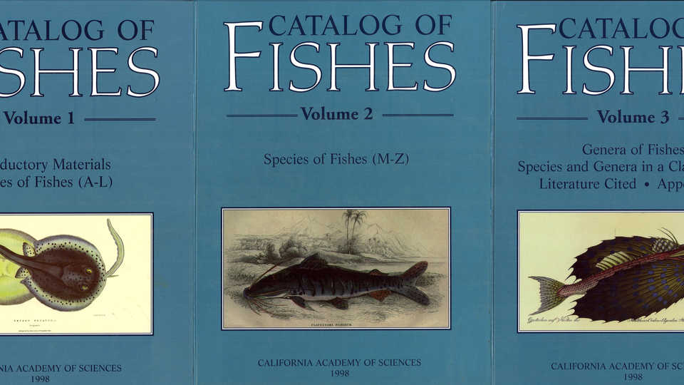 photo of catalog of fishes print version