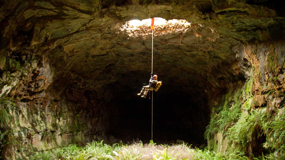 A scientist being lowered on a rope down into a sun-dappled cave
