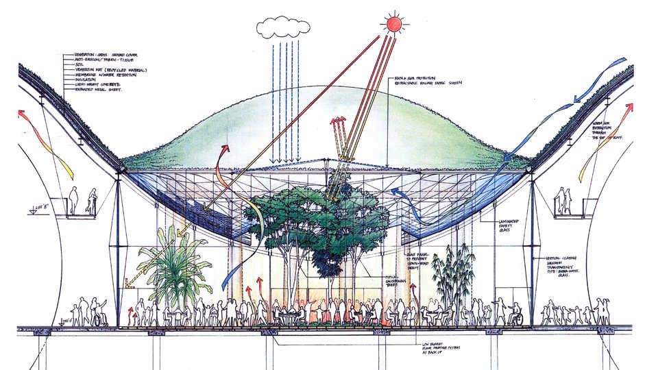 Living roof diagram