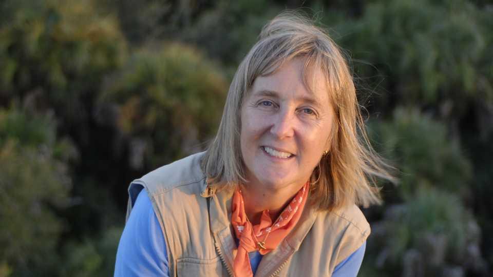 Meg Lowman in the canopy.
