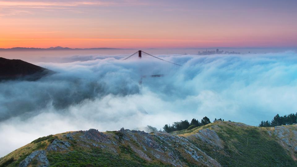 SF Coast