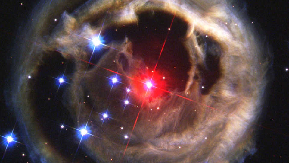 V838 by the Hubble Space Telescope