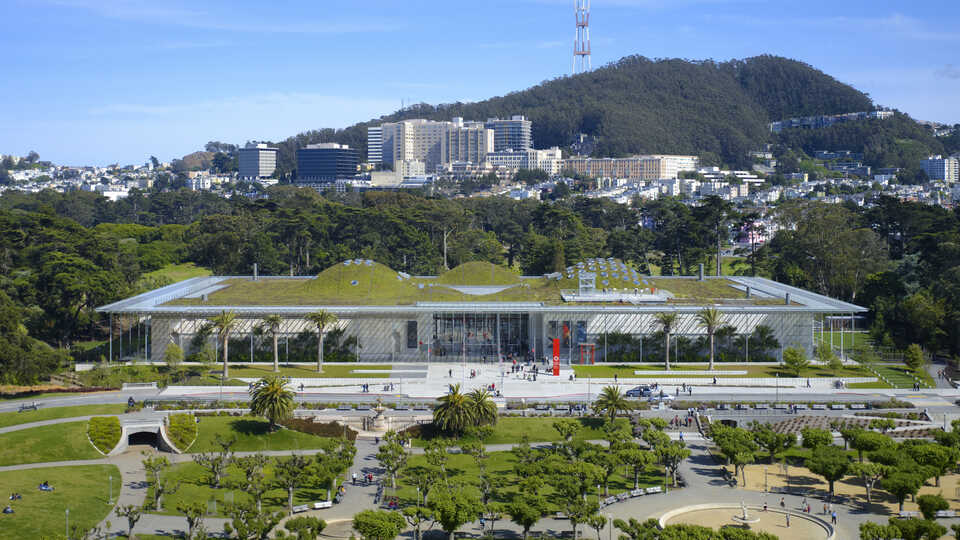 California Academy of Sciences; Photo: Tim Griffith
