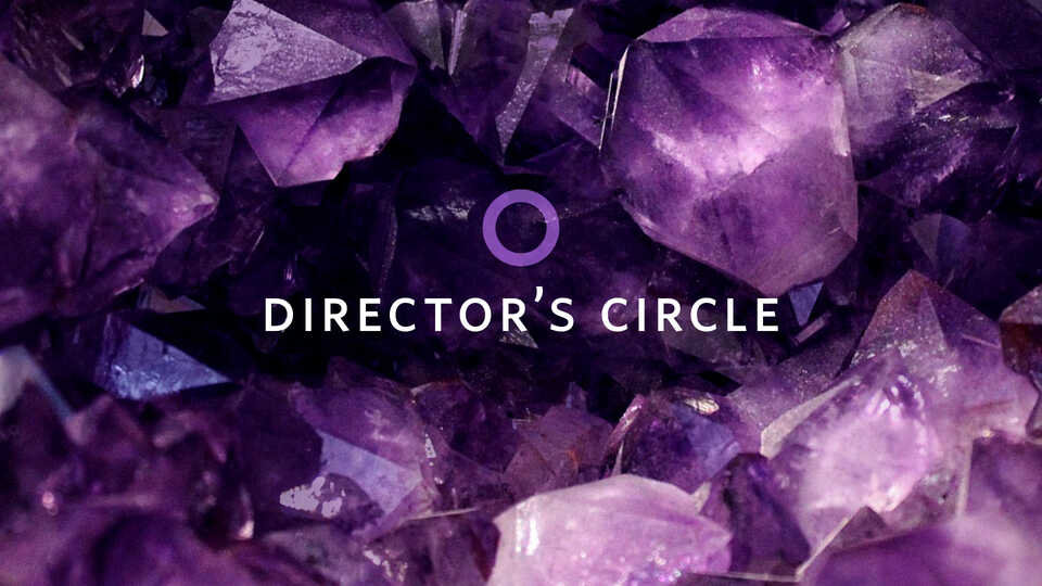 Directors Circle banner image with purple amethyst crystals