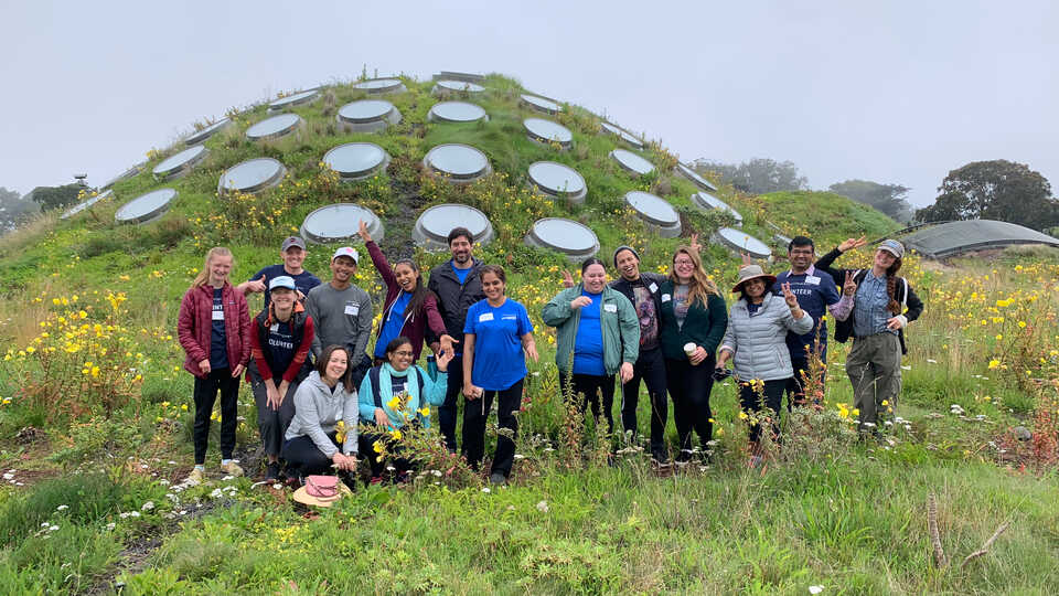 Volunteers from Oracle garden atop the Academy's Living Roof
