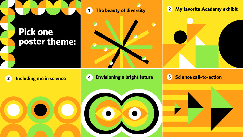 5 poster themes