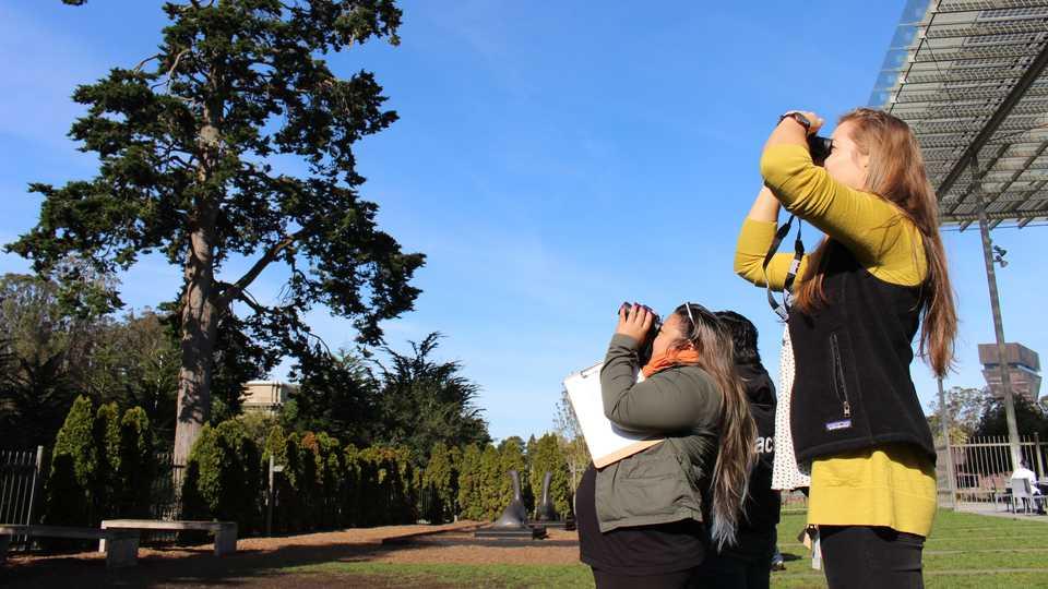 Bird-watchers use binoculars outside the Academy
