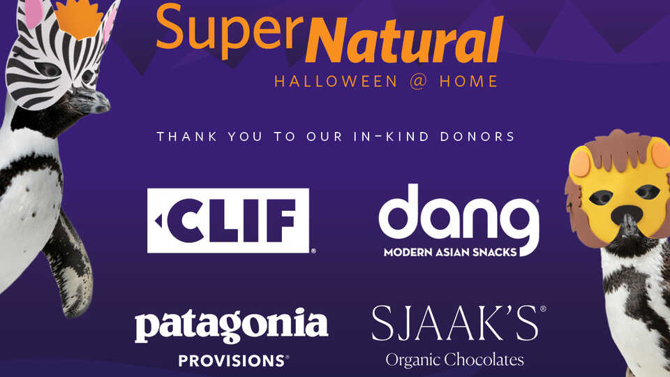 Thank you to our in-kind sponsors for SuperNatural Halloween @ Home