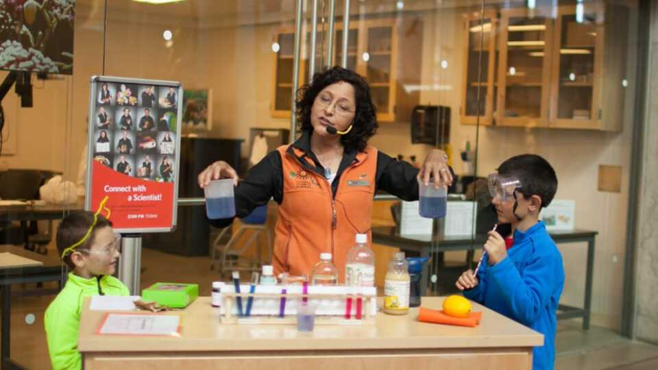 Educational Programs available at the California Academy of Sciences