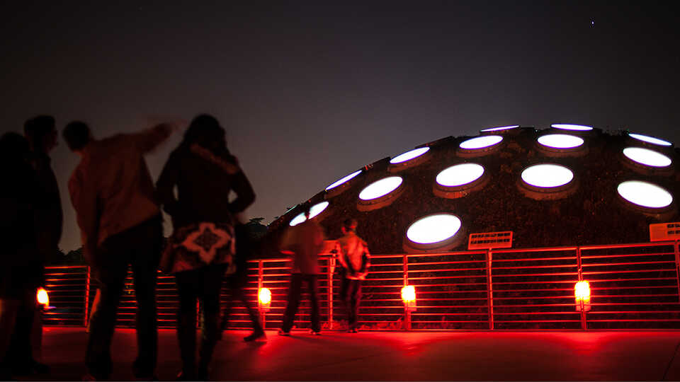 Visitors explore the Living Roof during NightLife.
