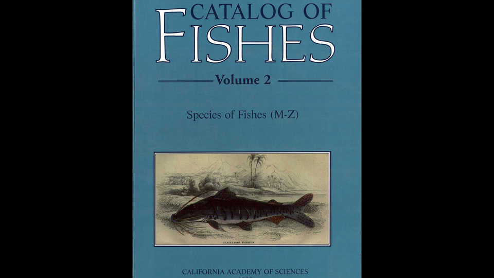Eschmeyer S Catalog Of Fishes California Academy Of Sciences