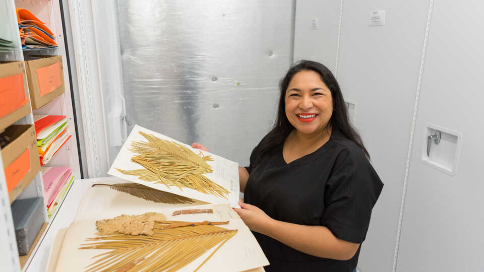 Nathalie Nagalingum, PhD, in the Academy's botany collections