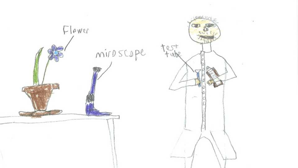 Lesson Plan | Draw a Scientist