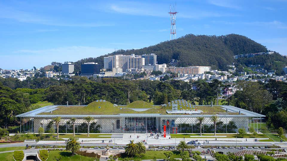 Academy museum Golden Gate Park