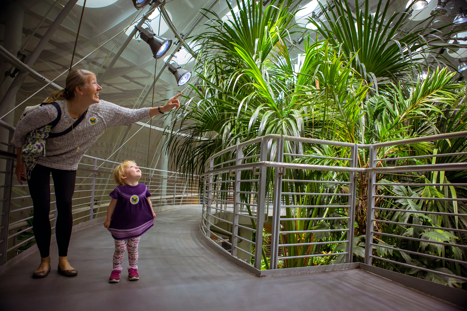 Osher Rainforest | California Academy of Sciences